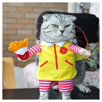 Cute Pet Dog Cat Costume Puppy Clothes Party BIG M Halloween Outfit XL](Cute Pet Halloween Costumes)