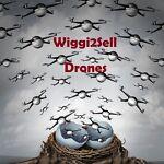 Wiggi2Sell Drones