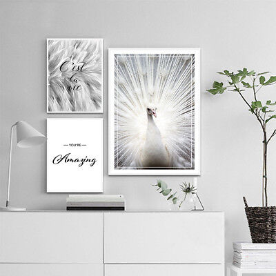 Black White Feather Wall Art Canvas Poster Nordic Print Skandinavian Decoration](Feather Wall Art)