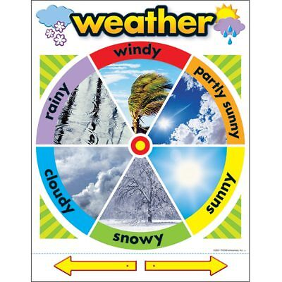 Weather Learning Chart Trend Enterprises Inc. T-38046 ()