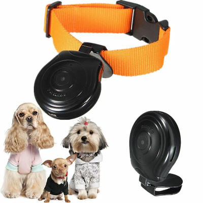 Mini Digital Dog Cat Pet LCD Camera Video Eye View Cam Collar Recorder Monitor