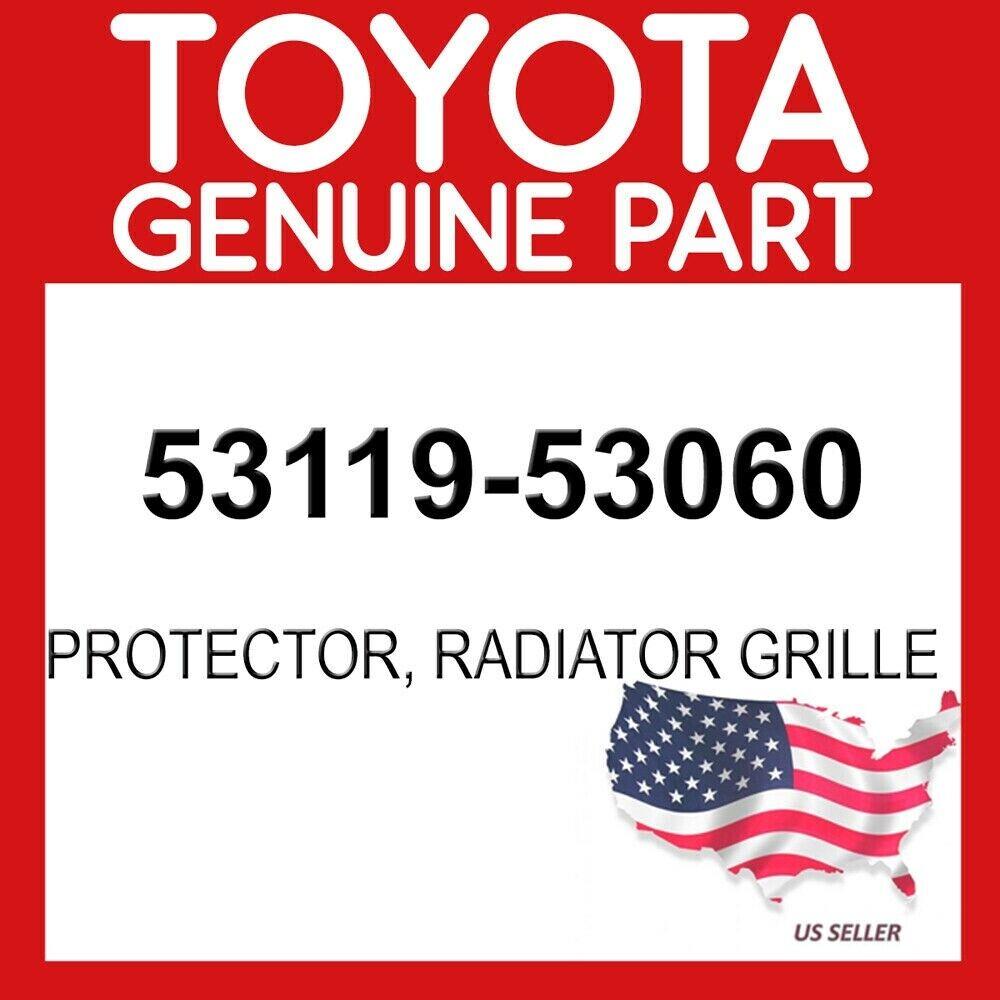 Genuine OEM Lexus 53119-53060 Radiator Grille Protector