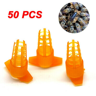 50pcs Tools For Hive Bee King Protection Cover Rearing Tools Queen Cage New