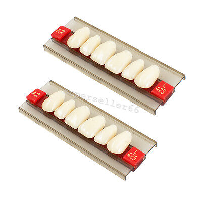 Best Anterior Acrylic Resin Denture Dental Upper Teeth Tooth Shade G425-a2 A3
