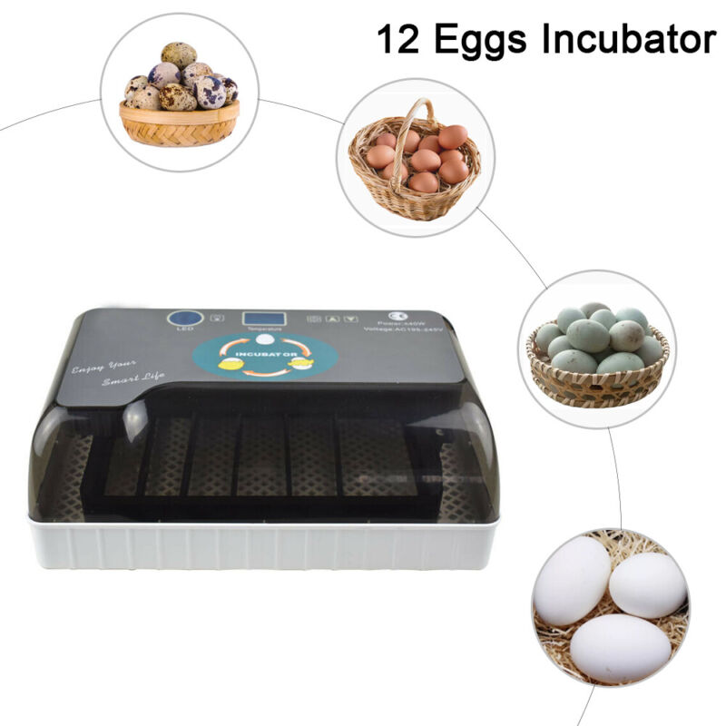 12 Eggs Incubator Fully Automatic Digital Poultry Hatcher Egg Turning Lamp LED