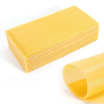 60pcs 7.7 Honeycomb Wax Frames Beekeeping Foundation Waxing Bee Hive Equipment
