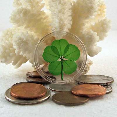 Real 5 Leaf Clover Good Luck Pocket Token Coin Item CH-5L - Good Luck Items