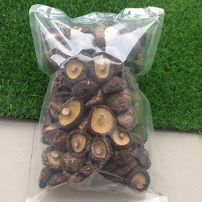 Dried Shiitake Mushrooms Wholesale 3-4cm Wooden 250g Organic Kitchen Food