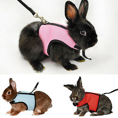 Adjustable Pet Harness Leash Rabbit Squirrel Lead Collar Mesh Vest for Small Pet