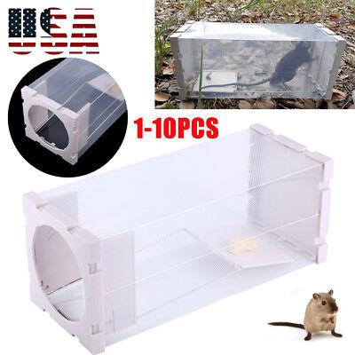 10*Humane Rat Trap Cage Animal Pest Rodent Mice Mouse Bait Catch Capture Control
