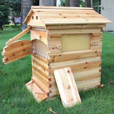 7pcs Auto Flowing Honey Hive Beehive Frames Beekeeping Brood Cedarwood Box Set