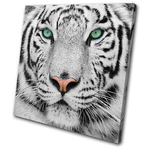 Animals-Siberian-Tiger-Eye-SINGLE-CANVAS-WALL-ART-Picture-Print-VA