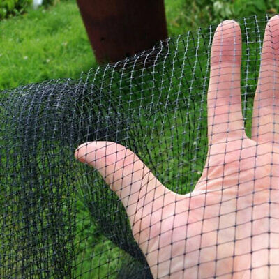 BUTTERFLY NETTING Fruit Cage Allotment Crop Protection Net 5x6mm Mesh 4m x 150m