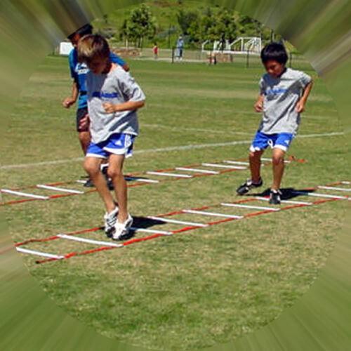 Speed Agility Training Sports Equipment Ladder 20 Feet