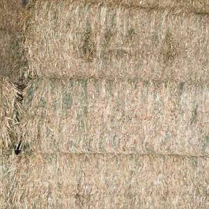 PRIME OATEN/LUCERNE MIX JUMBO BALES-8ft x 4ftx 3ft approx 600+kg Hornsby Area Preview