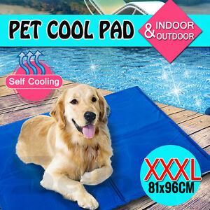 Pet Dog Cat Bed Non-Toxic Cooling Cool Water Cooling Gel Mat Summer Pad XL Extra