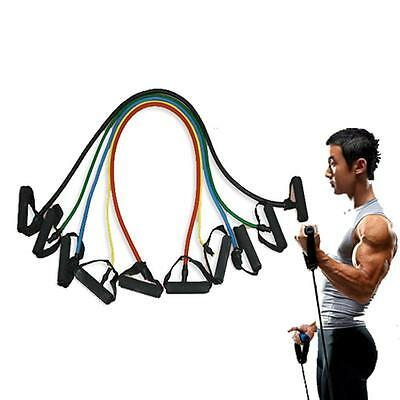 5 Pieces High Quality Resistance Bands Set Home Fitness Workout Bands
