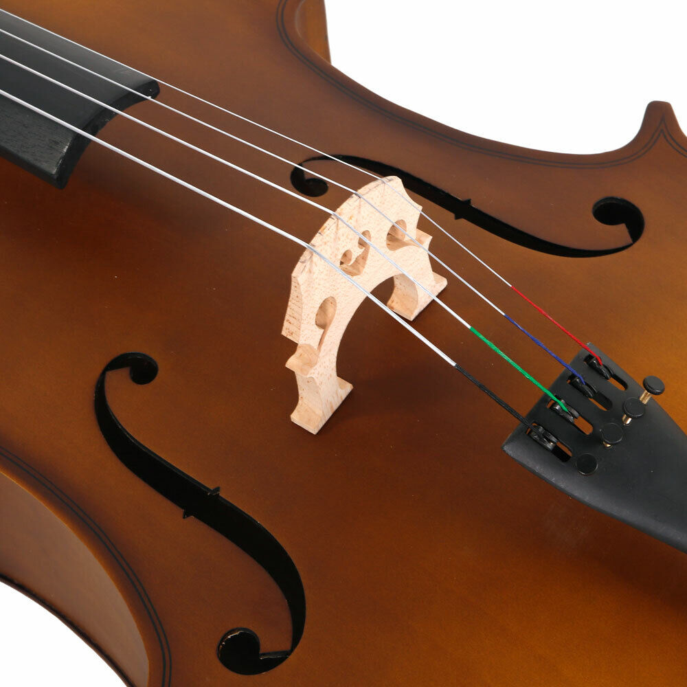 Adult cello