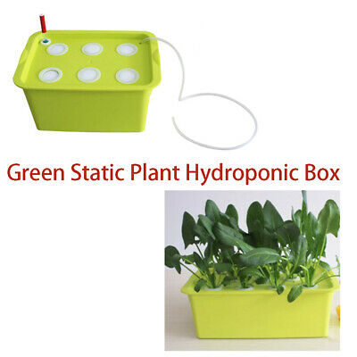 Static Plant Hydroponic Pot Green 1 Sets,220V 6 Holes Nursery Seedling Grow Box