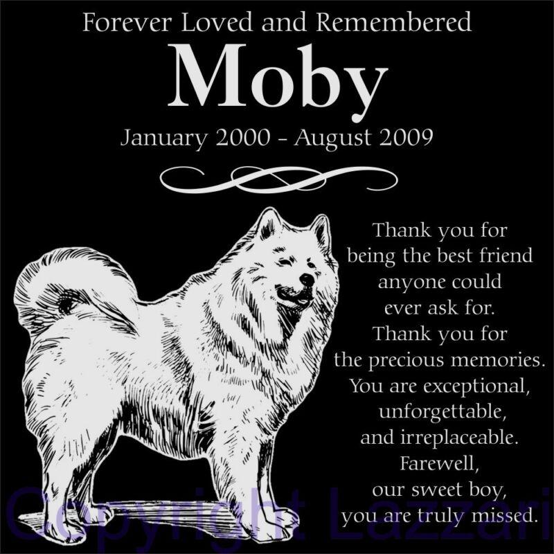 "Personalized Samoyed Pet Memorial 12""x12"" Custom Engraved Granite Grave Marker"