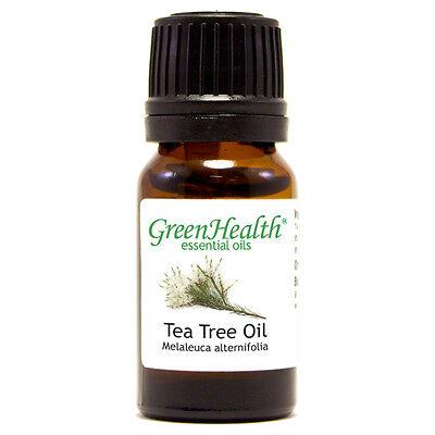 Tea Tree 100% Pure Essential Oil - 10 ml