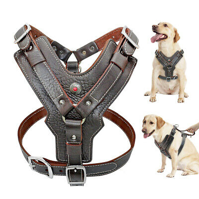 Medium Large Dogs Leather Harness With Handle Heavy Duty No Pull Vest -