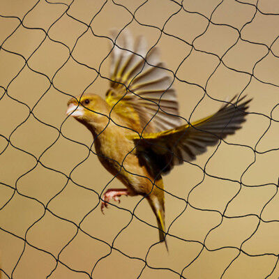 Anti Bird Netting 100x50 Soccer Baseball Game Poultry Fish Net 2x2 Mesh Usa