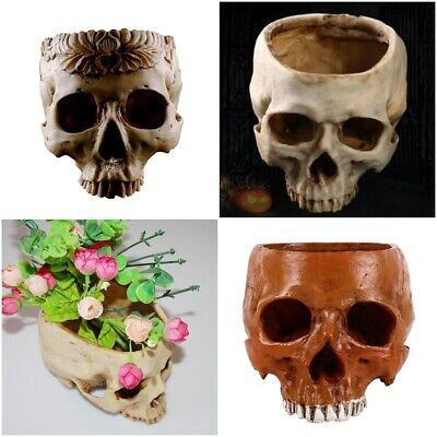 Skull Pot Decoration Flower Seeds Planter Resin Craft Home Office Decor Idea