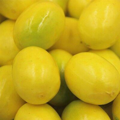 Pack of 20 Artificial Plastic Foam Lemon Miniature Fake Fruit Wedding Home Decor