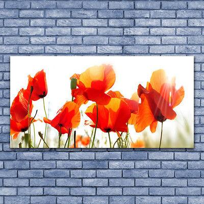 Acrylglasbilder Wandbilder Druck 140x70 Mohnblumen Pflanzen (Mohn Pflanzen)