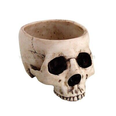Skeleton Skull Medium Kitchen Bowl Figurine