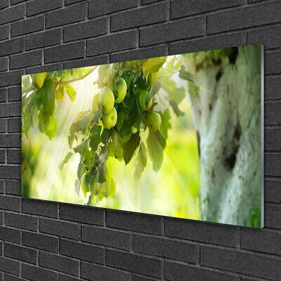 Tulup Cuadro de pared Foto en metacrilato 100x50 Rama manzanas Cocina
