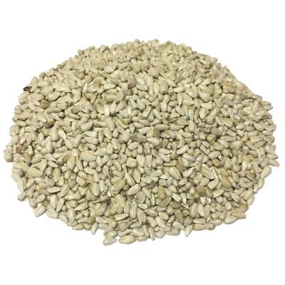 Wagners Safflower Seed Wild Bird Food 50 lb. Bag Feeder Cardinals Squirrels