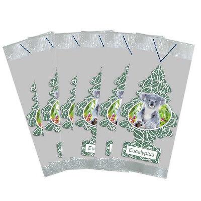 Little Trees Car Air Freshener 6-Pack (Eucalyptus) - Eucalyptus Air Freshener