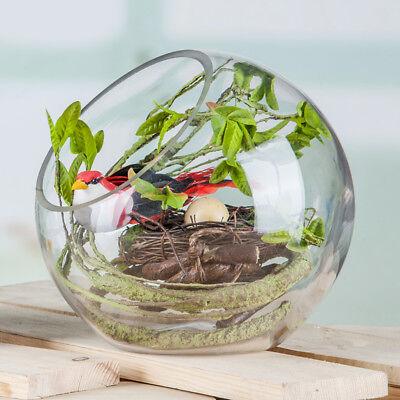 Globe Glass Ball Planter Vase Flower Plant Pot Terrarium Container Tabletop