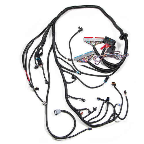 For 1997-2006 DBC LS1 Standalone Wiring Harness W/ 4L60E 4