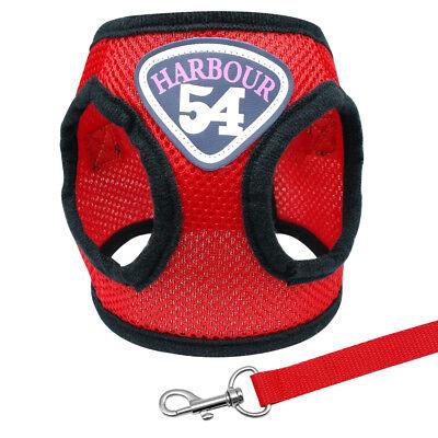 Mesh Dog Walking Harness & Leash Puppy Kitten Cat Walk Collar Safety Strap Vest