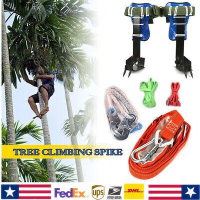 Treepole Climbing Spike Safety Belt Straps Adjustable Lanyard Rope Carabiner