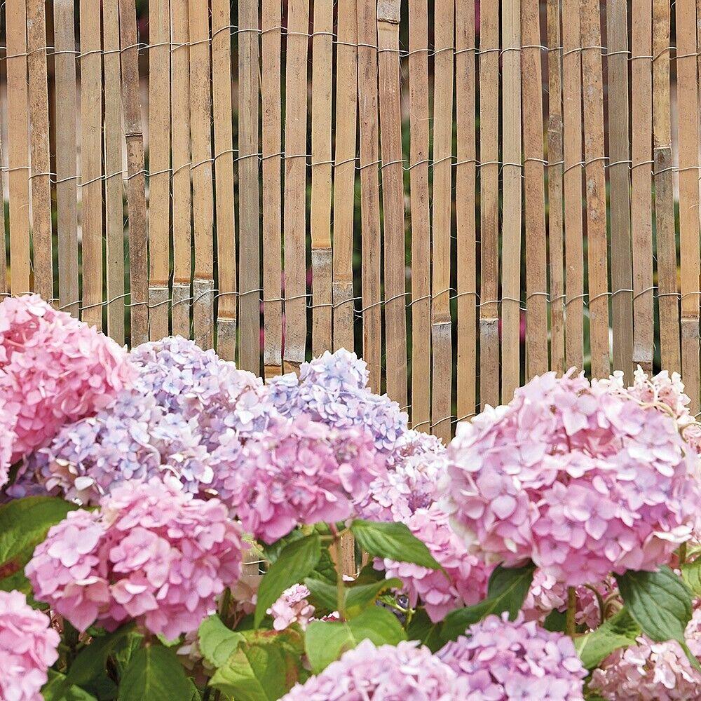 Bamboo Fencing Slat Screening Split Cane Fence Garden Privacy Panel Balcony Roll