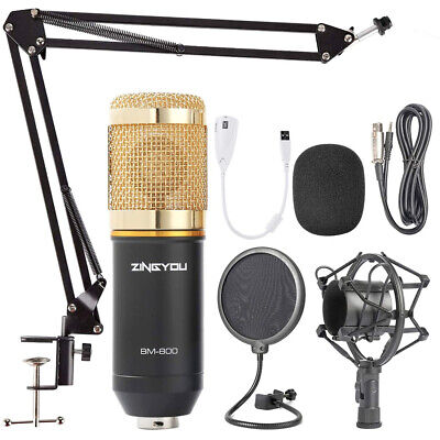 Microfono condensador profesional potente Jack estereo estudio BMKLACK800 dorado