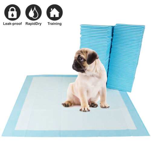 """100 Pet Disposable Training Pads for Dog and Puppy Underpads, 22"""" x 22"""" PE-PAD"""