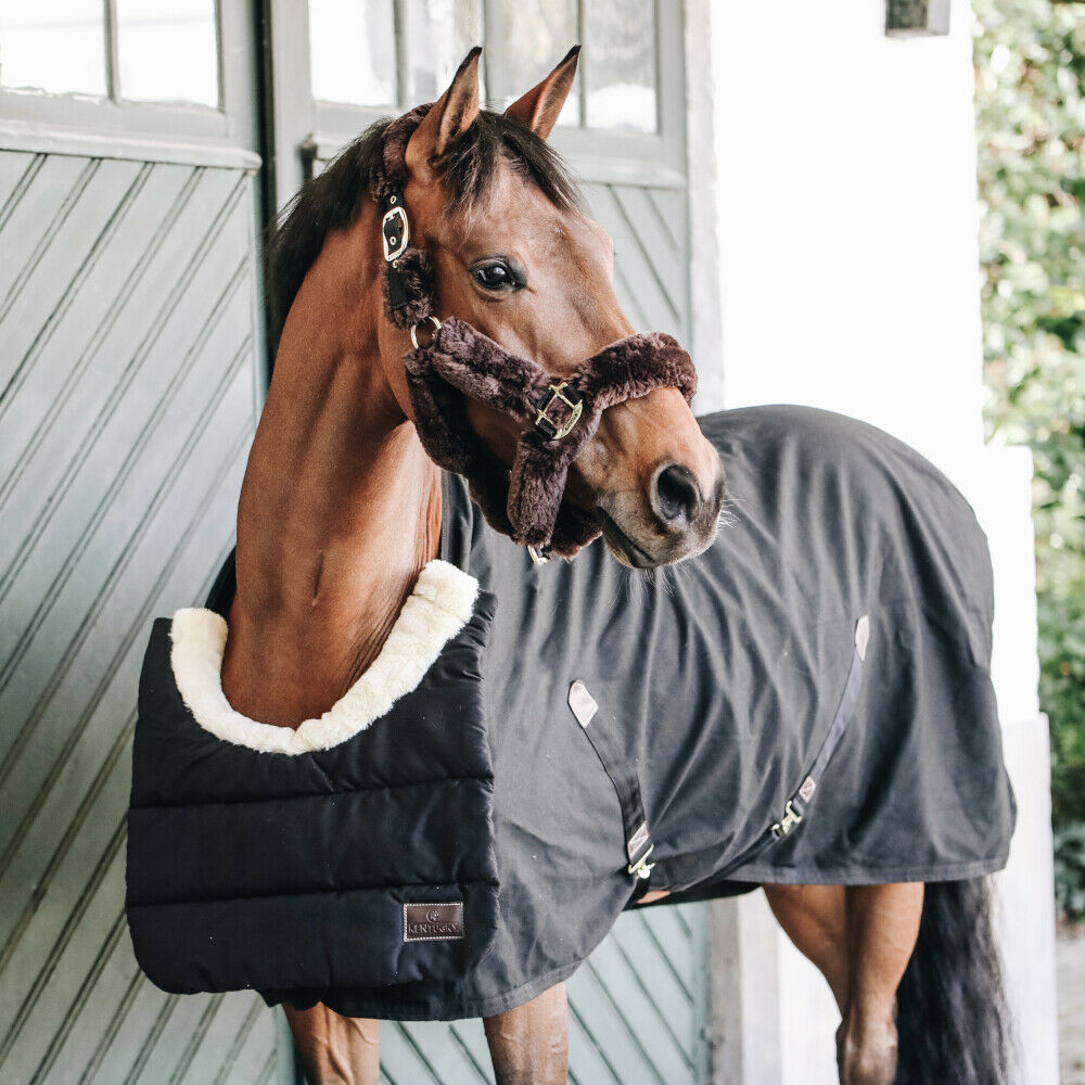 Kentucky Horsewear BIB Winter Brustschutz - schwarz