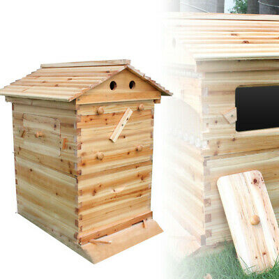 Us Beekeeping Chinese Fir Super Brood Box Wooden Box For Honey Bee Hive Frames