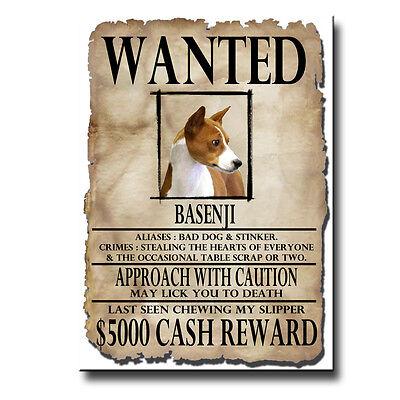 BASENJI Wanted Poster FRIDGE MAGNET No 1 New DOG Funny