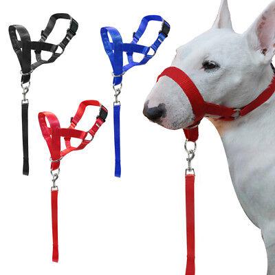 Nylon Dog Head Collar Halti Short Leash for Dogs Training No Bite Bark -