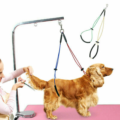 Pet No-Sit Haunch Holder Dog Grooming Leash Harness Loop Restraint for Table Arm