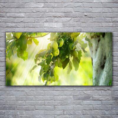 Tulup Cuadro sobre lienzo Foto lona Pared 120x60 Rama manzanas Cocina