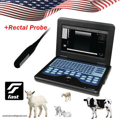 Vet Veterinary Ultrasound Scanner Portable Laptop Animal Machine7.5rectal Probe