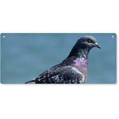 'Pigeon' Large Wooden Wall Plaque / Door Sign (DP00015614)