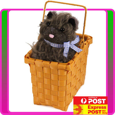 Dorothy Halloween Costume Accessories (Wizard of Oz Dorothy Toto in Basket Wonders Dog Halloween Costume)